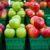 Systematyczny podział jabłek i gruszek
